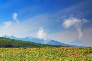 ニッコウキスゲと富士山と八ケ岳の写真素材 [FYI02474315]