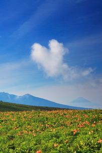 ニッコウキスゲと富士山とハート型の雲の写真素材 [FYI02474399]