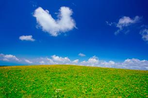ニッコウキスゲとハート型の雲の写真素材 [FYI02474497]
