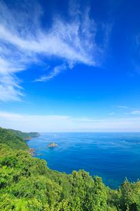 浦ノ内須ノ浦付近から望む地ノ鼻方向の海岸線の写真素材 [FYI02475355]