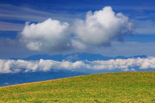 ニッコウキスゲと木曽駒ヶ岳など中央アルプスとわた雲の写真素材 [FYI02475458]