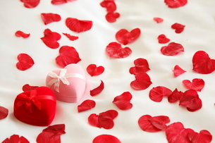 ピンクと赤のジュエリーボックスとバラの花びらの写真素材 [FYI02480862]