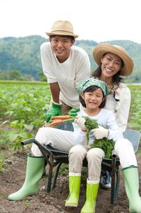 畑の中で一輪車に乗る三人家族の写真素材 [FYI02480958]