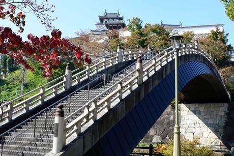 昇龍橋から福知山城見るの写真素材 [FYI02489815]
