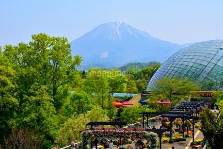 とっとり花回廊から大山の写真素材 [FYI02489952]