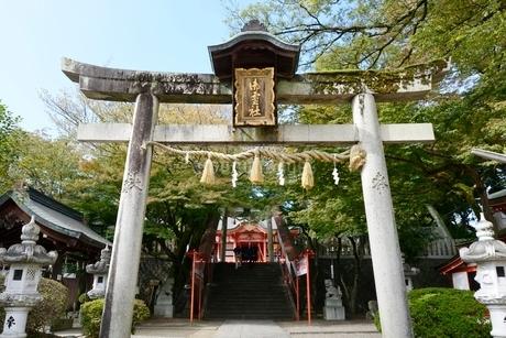 福知山,御霊神社鳥居の写真素材 [FYI02490123]