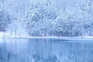 中綱湖と雪の写真素材 [FYI02490213]