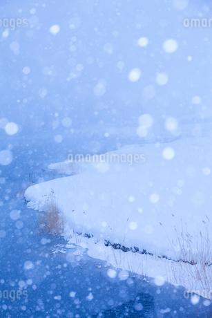 雪と中綱湖の写真素材 [FYI02490416]