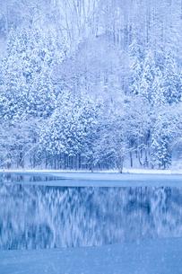 中綱湖と雪の写真素材 [FYI02490429]