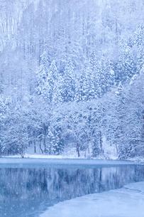 中綱湖と雪の写真素材 [FYI02490481]