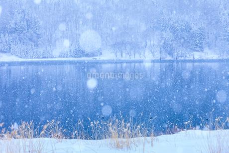 中綱湖と雪の写真素材 [FYI02490567]