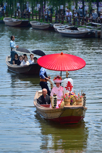 潮来あやめ祭り会場の嫁入り舟の写真素材 [FYI02491576]