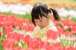 春の公園でチューリップ畑で遊ぶ女の子の写真素材 [FYI02494389]