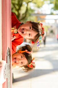 神社の片隅から覗き込む晴れ着を着た女の子の写真素材 [FYI02494629]