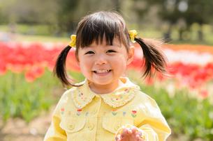 春の公園でチューリップ畑で遊ぶ女の子の写真素材 [FYI02494746]
