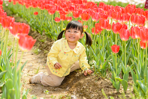春の公園でチューリップ畑で遊ぶ女の子の写真素材 [FYI02495019]
