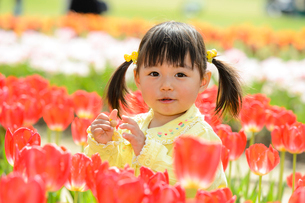 春の公園でチューリップ畑で遊ぶ女の子の写真素材 [FYI02495257]