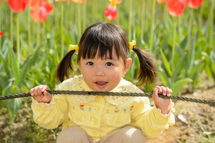 春の公園でチューリップ畑で遊ぶ女の子の写真素材 [FYI02495336]
