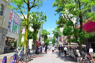 横浜伊勢佐木町商店街イセザキモールの写真素材 [FYI02498991]