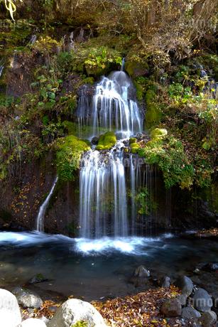 吐竜の滝の写真素材 [FYI02499077]
