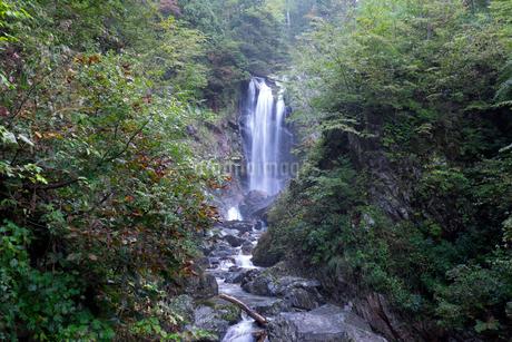 天生中滝の写真素材 [FYI02499411]