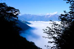白山連峰と雲海の写真素材 [FYI02499776]