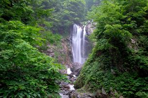 天生中滝の写真素材 [FYI02499783]
