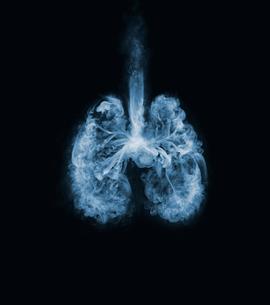 煙で作られた肺の写真素材 [FYI02500187]