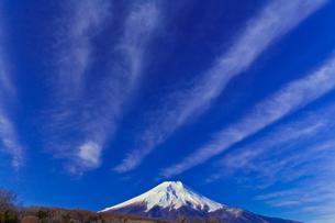 忍野村から見た富士山の写真素材 [FYI02500459]
