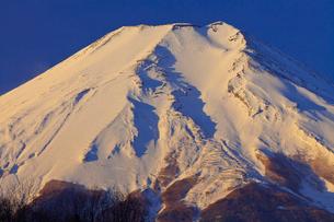 忍野村から見た富士山の写真素材 [FYI02500515]