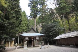 大瀧神社の写真素材 [FYI02500911]