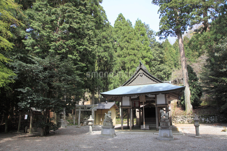 大瀧神社の写真素材 [FYI02501004]