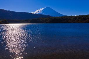 西湖から見た富士山の写真素材 [FYI02501293]