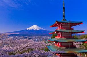 新倉山浅間公園から見た富士山と桜と忠霊塔の写真素材 [FYI02501448]