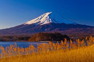河口湖から見た朝の富士山の写真素材 [FYI02501564]