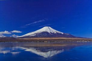 山中湖から見た富士山の写真素材 [FYI02501739]