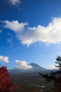 山梨県の紅葉台より望む紅葉と富士山の写真素材 [FYI02503707]