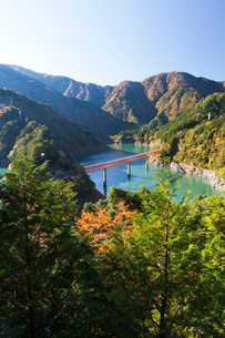 紅葉の接岨湖と鉄橋の写真素材 [FYI02503802]