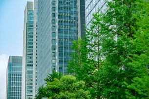 ビルと緑の写真素材 [FYI02504339]
