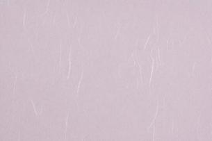 和紙の表面の写真素材 [FYI02504695]