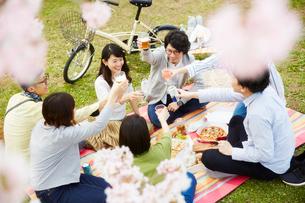 お花見をする男女7人の写真素材 [FYI02506295]