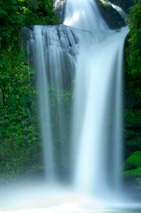 慈恩の滝 の写真素材 [FYI02506768]