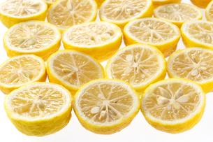 柚子の写真素材 [FYI02507076]