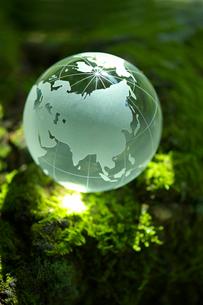 地球儀と苔の写真素材 [FYI02507283]