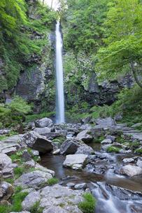 阿弥陀ヶ滝の写真素材 [FYI02508132]