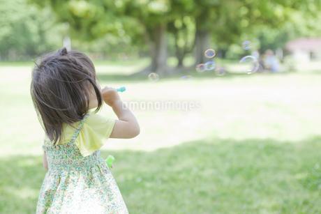 シャボン玉遊びをする女の子の写真素材 [FYI02508658]
