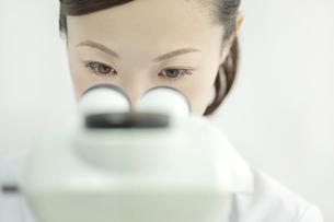 顕微鏡を覗く日本人女性研究者の写真素材 [FYI02508900]
