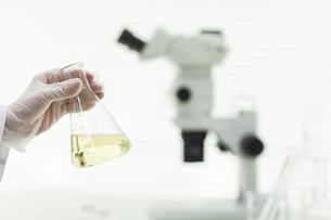バイオの研究をする男性研究者の手の写真素材 [FYI02508935]