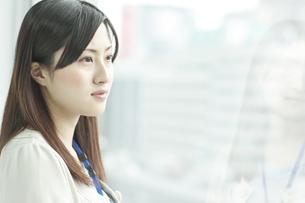横顔の女性社員の写真素材 [FYI02509077]