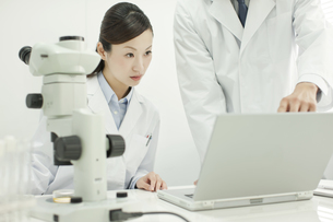 研究室でパソコンを覗き込む男女の研究者の写真素材 [FYI02509207]
